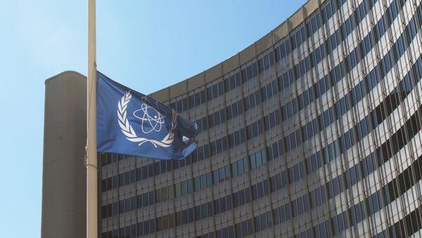 La bandera con el logo de la OIEA - Sputnik Mundo