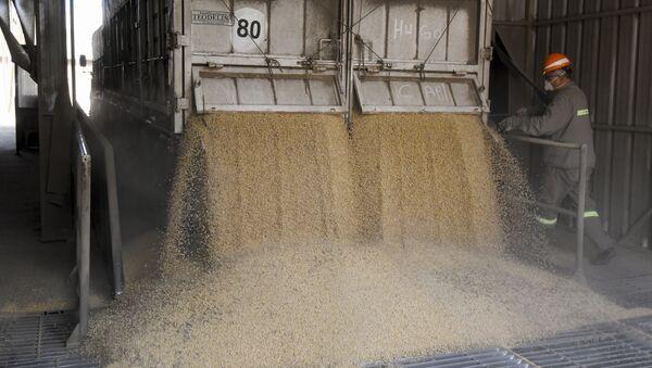 Un cargamento de soja en Argentina - Sputnik Mundo