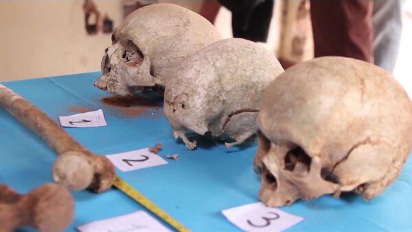 Conmoción en Paraguay por los restos humanos hallados en la finca del exdictador Stroessner - Sputnik Mundo