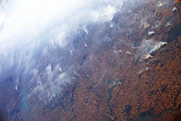 Así se ve desde el espacio el 'pulmón del planeta' quemado   - Sputnik Mundo