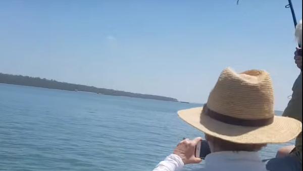 Un australiano pesca un enorme cocodrilo  - Sputnik Mundo