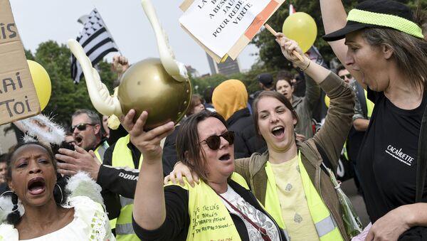 Manifestantes con chalecos amarillos sostienen pancartas en Nantes - Sputnik Mundo