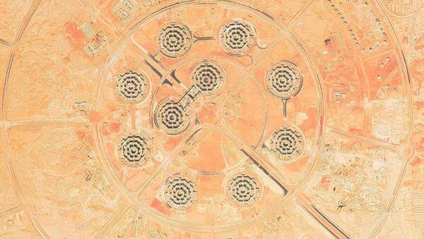 Nuevos edificios del Ministerio de Defensa de Egipto - Sputnik Mundo