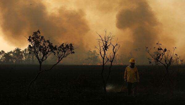 Los incendios en Amazonía - Sputnik Mundo