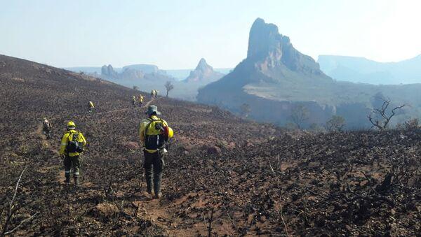 Consecuencias de los incendios forestales en Santa Cruz, Bolivia - Sputnik Mundo