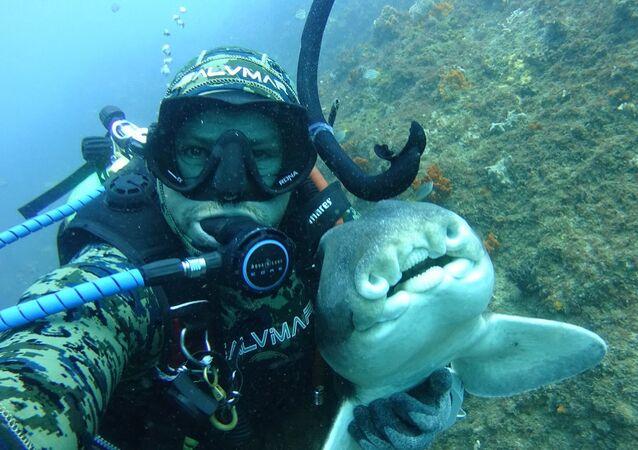 Rick Anderson y un tiburón de Port Jackson, en Australia