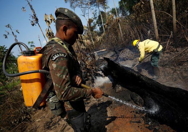 Fuerzas Armadas de Brasil en Amazonía