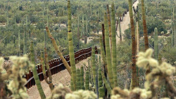 Cerco entre México y EEUU en la zona del Monumento Nacional Organ Pipe Cactus, que será remplazado por el muero fronterizo - Sputnik Mundo