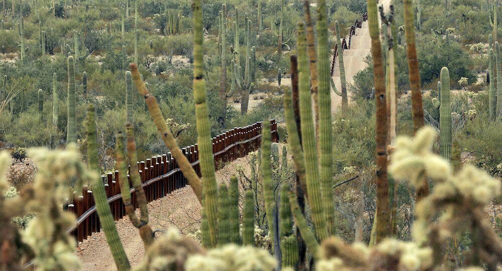 Cerco entre México y EEUU en la zona del Monumento Nacional Organ Pipe Cactus, que será remplazado por el muero fronterizo