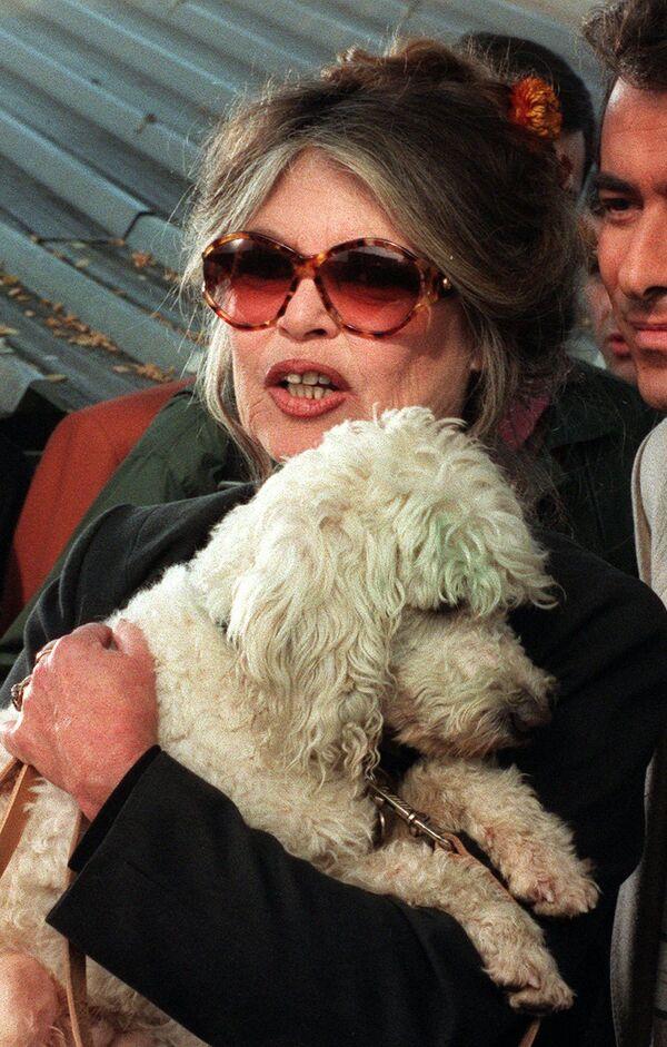 Brigitte Bardot, la inolvidable 'sex symbol' francesa cumple 85 años - Sputnik Mundo