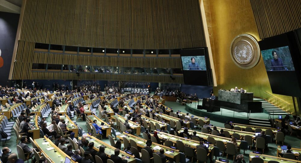 La Asamblea General de la ONU