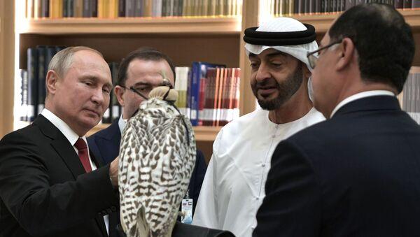 Vladímir Putin regala un halcón gerifalte blanco al príncipe heredero de Abu Dabi, Mohamed bin Zayed Nahyan - Sputnik Mundo