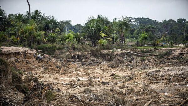 Deforestación causada por minería ilegal en la Amazonía peruana - Sputnik Mundo