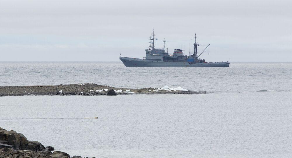Altái, el barco de la expedición, con un oso nadando en primer plano
