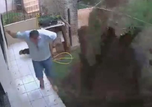 Un hombre hace explotar su jardín para librarse de un simple hormiguero