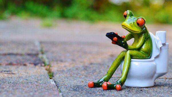 Una rana con un teléfono móvil sentada en un indoro (imagen referencial) - Sputnik Mundo