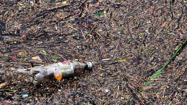 Una botella de plásctico (imagen referencial) - Sputnik Mundo