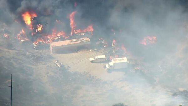 Fuertes incendios forestales afectan a miles de personas en California - Sputnik Mundo