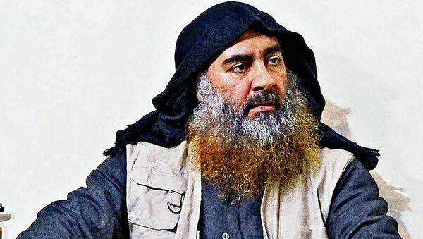 Abu Bakr Bagdadi, líder de ISIS - Sputnik Mundo