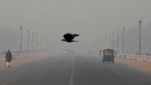 Polución de aire en Nueva Delhi - Sputnik Mundo