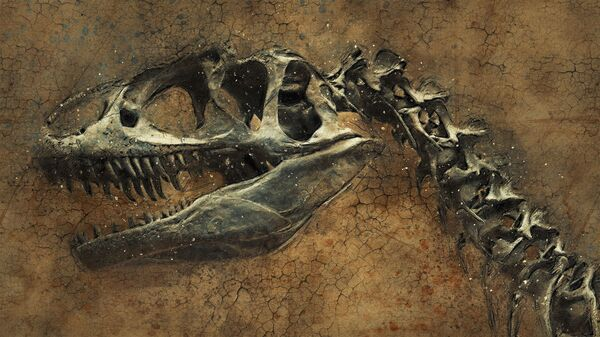 El esqueleto de un dinosaurio - Sputnik Mundo