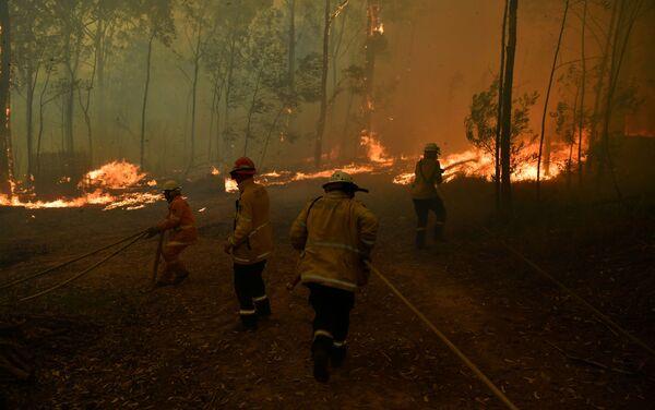 Bomberos intentan apagar un incendio forestal en Sydney, Australia - Sputnik Mundo