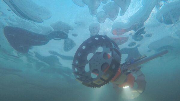 BRUIE, el nuevo róver acuático de la NASA - Sputnik Mundo