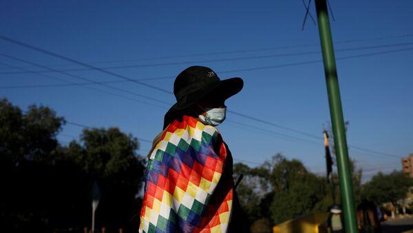 Un manifestante a favor de Evo Morales con una Whipala - Sputnik Mundo