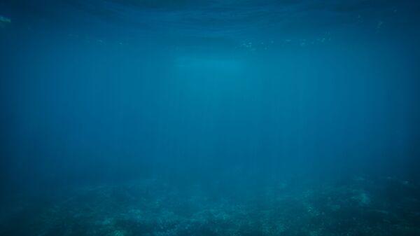 Profundidades del océano - Sputnik Mundo