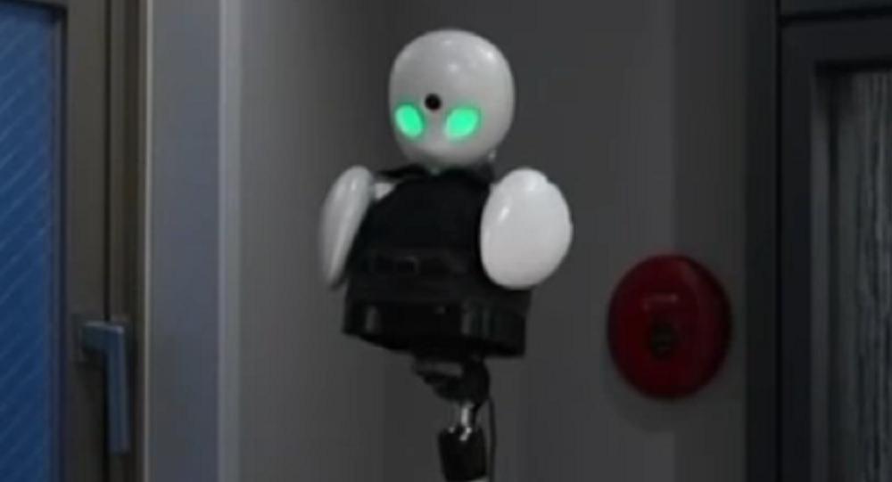 Este robot ayuda a los discapacitados a disfrutar del mundo exterior