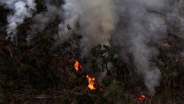 Incendio forestal en la Amazonía brasilena - Sputnik Mundo