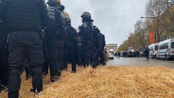 Protesta de agricultores en París - Sputnik Mundo