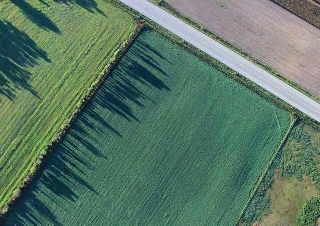 La vista aérea de un campo (imagen referencial)