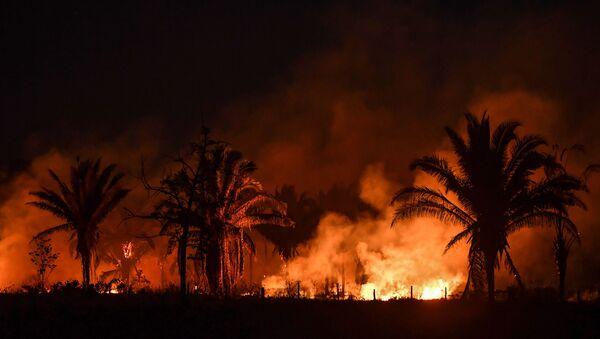 Incendios forestales en la Amazonía brasileña - Sputnik Mundo