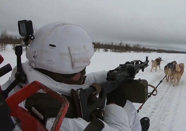 Los militares rusos aprenden a montar en trineos tirados por huskis
