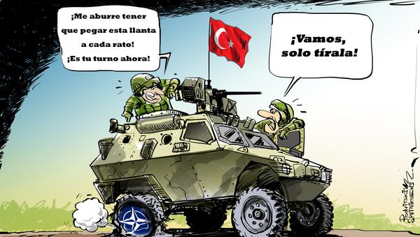 La OTAN ya no satisface a Turquía - Sputnik Mundo