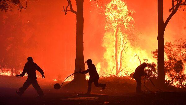 Волонтеры, пожарные и спасатели из Нового Южного Уэльса тушат пожар неподалеку от деревни Термейл, Австралия - Sputnik Mundo
