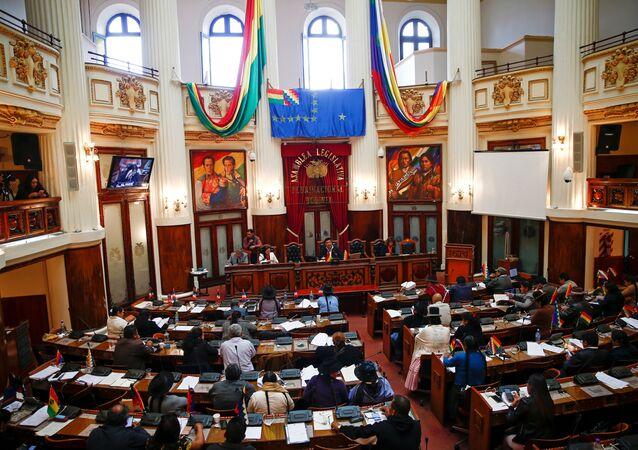 El Congreso de Bolivia, vista general