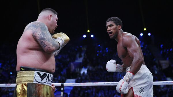 La pelea entre Andy Ruiz y Anthony Joshua - Sputnik Mundo