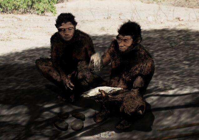 Homo erectus, ilustración