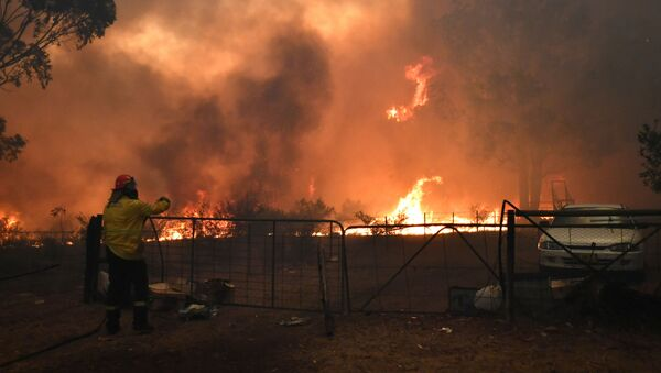 Incendios en el sureste de Australia - Sputnik Mundo