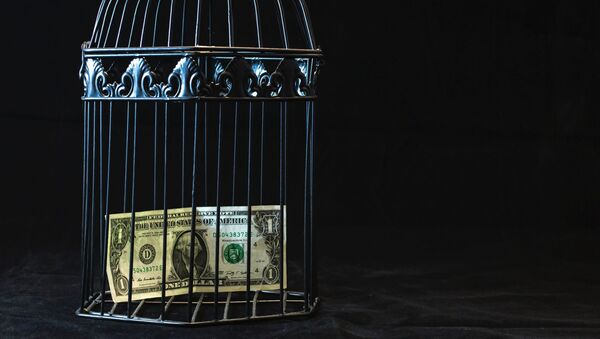 Un billete de dólar en una jaula - Sputnik Mundo