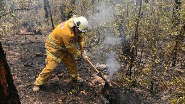 Lucha contra los incendios forestales en Australia - Sputnik Mundo