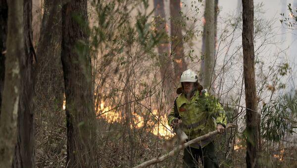Incendios en Australia - Sputnik Mundo