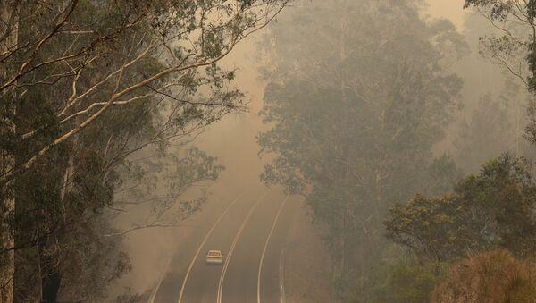 El humo de los incendios forestales en una carretera cerca de Moruya, Australia, el 4 de enero de 2020 - Sputnik Mundo
