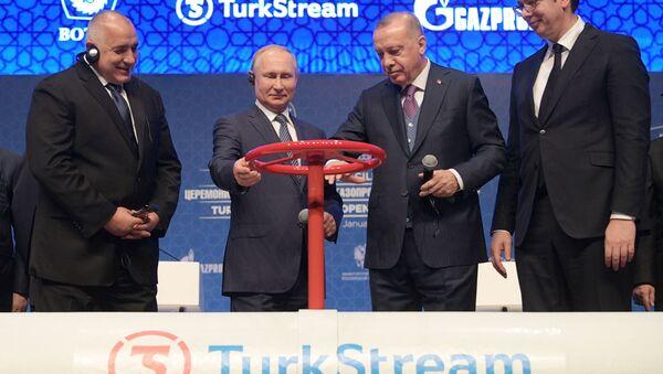 El primer ministro búlgaro, Boiko Borisov; el presidente de Rusia, Vladímir Putin; el presidente turco, Recep Tayyip Erdogan; y el presidente serbio, Aleksandar Vucic, en la inauguración del Turk Stream - Sputnik Mundo