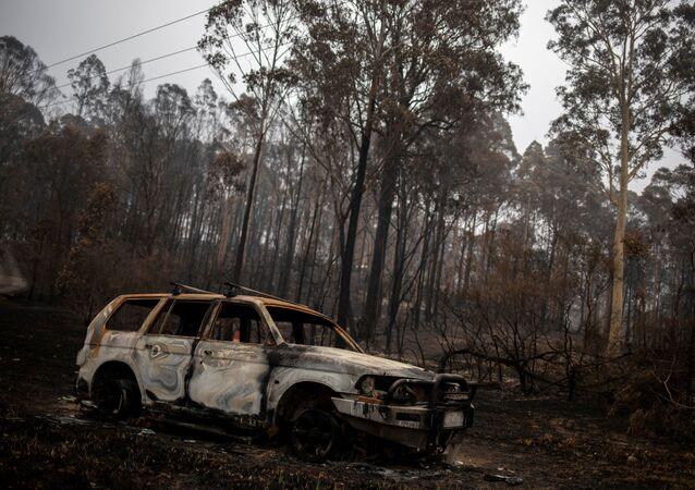 Consecuencias de los incendios en Australia