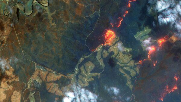 Una imagen satelital de los incendios en Australia - Sputnik Mundo