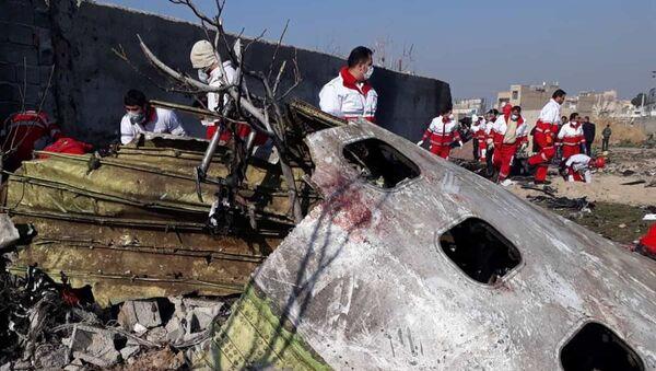 El Boeing 737-800 de Ukraine International Airlines derribado en Irán - Sputnik Mundo