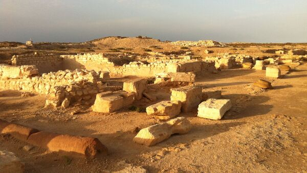 Las ruinas de la antigua ciudad de Meninx - Sputnik Mundo